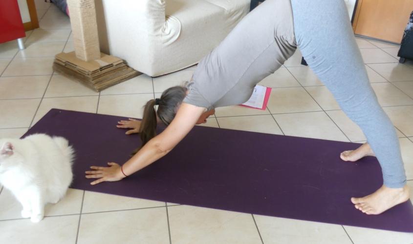 perche ho iniziato a fare yoga