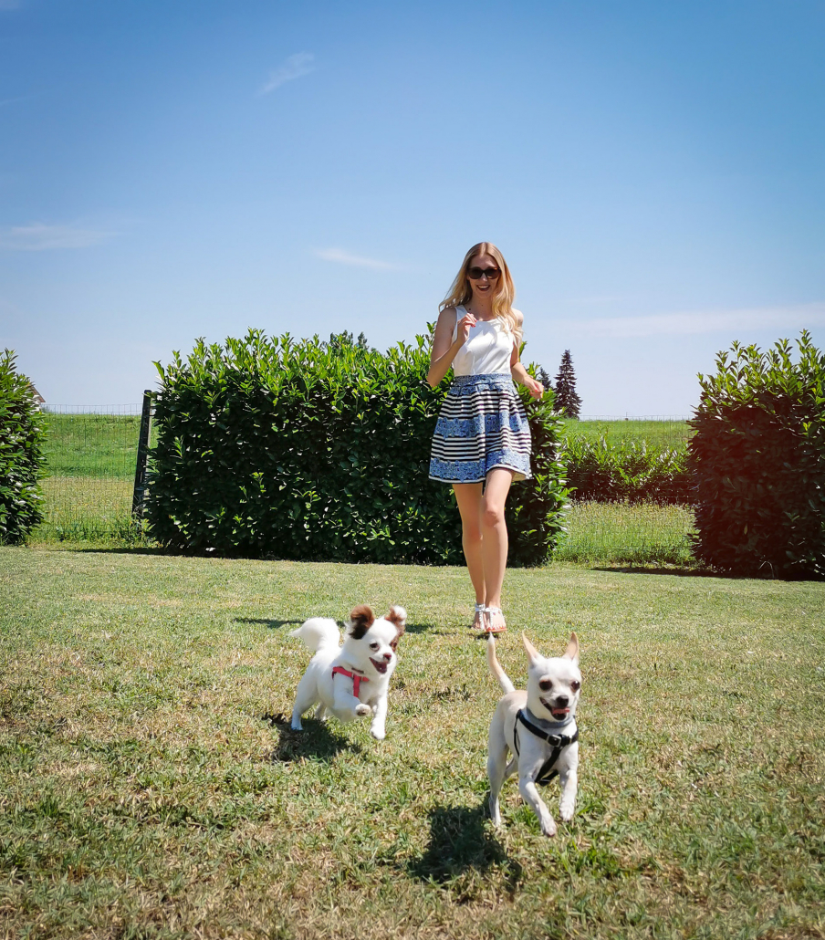 Federica Marchini pet influencer i suoi chihuahua